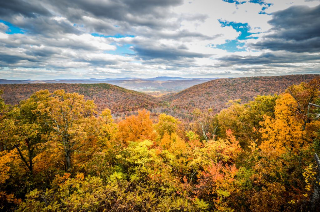 The Shenandoah Valley offers one of the best displays of fall colors in the country. m01229
