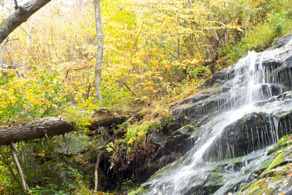 Crabtree Falls is the highest in the Virginia Blue Ridge, and a very popular hiking destination. Karen Blaha